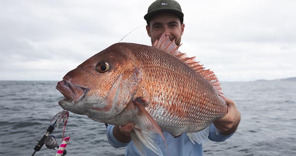HAURAKI GULF FISHING OCTOBER 2018