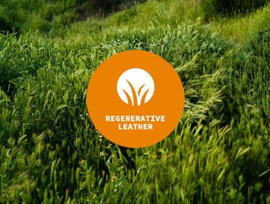 Regenerative Leather
